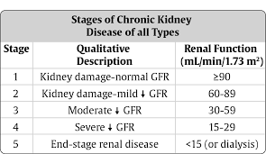 a Case Study on Chronic Kidney Disease