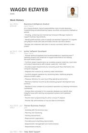 Resume Examples Resume Template Analyst Resume Examples Program Manager  Resume     Business Analyst Resume VisualCV