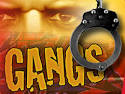 Lahore: 2 gangs smashed | Pakistan Criminal Records