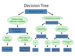 images about my concern research on Pinterest   Ap     Pinterest statistical test decision chart   Google Search