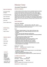 Account executive resume  sales  marketing  cover letter  job