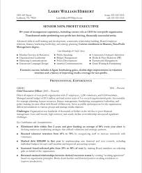 Examples Of Creative Resumes by Non Profit Executive Page1 Non Profit Resume Samples Pinterest