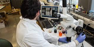 Master     s Program   UW Bioengineering University of Washington