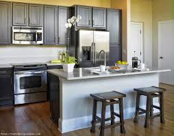 apartments foxy modern kitchen designs for condos florida condo