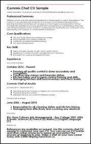 Acting CV      Beginner Acting Resume Example Template Dayjob