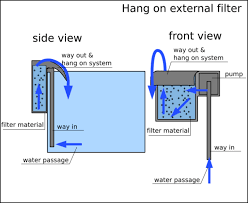 filter ikan