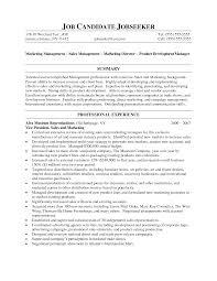Vp Of Marketing Resume Samples Vice President Of Sales Resume