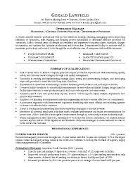 Example Resume  Sample Director Of Operations Resume Sample Resume     Binuatan