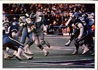 1980–81 NFL playoffs