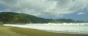 Meru Betiri National Park