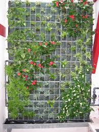 Deco Mur Exterieur Construire Mur Vegetal Exterieur U2013 Obasinc Com