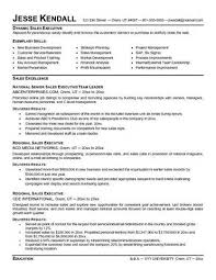 back office executive resume sample resumecompanioncom  executive     resume service cincinnati sales resume executive resume writing service