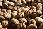 Stress Reliever - Nuts