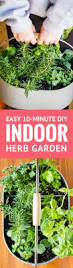 best 25 patio herb gardens ideas on pinterest gardening