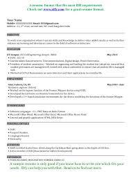 Best Software Developer Resume by Resume Formatting Software