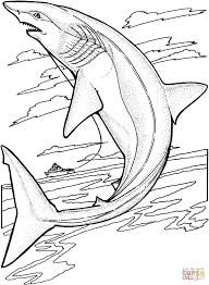 lemon shark coloring pages free coloring pages tiger shark