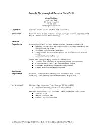 Fast Food Resume Samples by Audit Resume Best Auditor Resume Example Audit Senior Resume Big 4