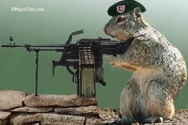 El ejército furioso - Fred Vargas Images?q=tbn:ANd9GcT6JlVeDSPK80n-YNCp-RxfH5mSWoKrbja4Tyo34fx0R1u7FjW8Uw