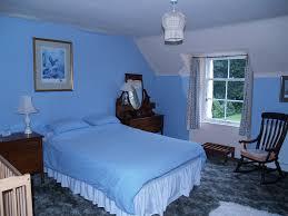Download Bedroom Colors Blue Gencongresscom - Bedroom color