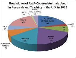 Animal testing in cosmetic industry essay websitereports web Buy research paper online the advent of the federal aviation Animal testing in cosmetic