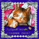Плейкаст «Спокойной ночи»