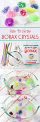 best 25 borax crystals ideas on pinterest borax crafts diy