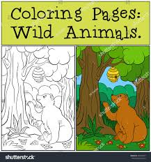 coloring pages wild animals cute brown stock vector 425078647