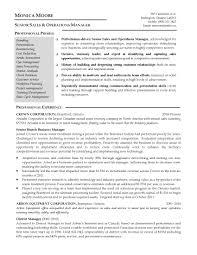 Amusement Park Business Plan Sample Park Resume Template Resume       business resume template