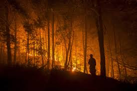 Willow Wildfire California by Tinder Dry An Early Start To Wildfire Season In The West The