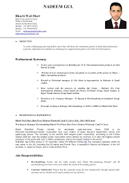 Hr Executive Resume  hr executive resumes   template  human     Resume Resource desktop resume captured jpg