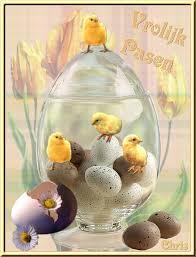 Felices Pascua