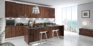 Tampa Kitchen Cabinets Modern Rta Kitchen Cabinets U2013 Usa And Canada