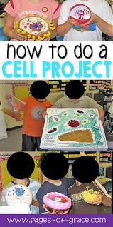 best 25 about cell ideas on pinterest life cell a cell and