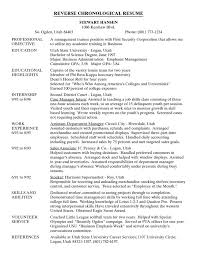 ideas about Chronological Resume Template on Pinterest
