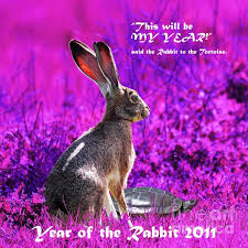 2011- Year of the Rabbit