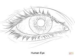 eye coloring page eson me