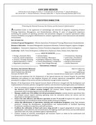 Retail Professional Summary Job Resume Examples For College Students Professional First Tem