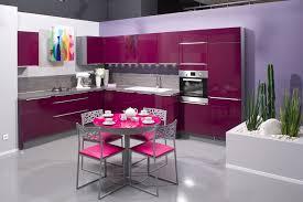 Best Kitchen Designs In The World by Furniture Awesome Ideas Best Restaurant Design In The World Purple
