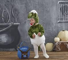 Dinosaur Halloween Costumes Baby Dinosaur Egg Costume Pottery Barn Kids