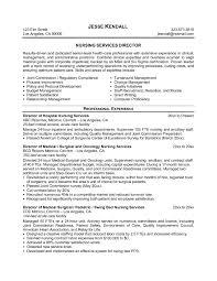 Examples Of Nursing Resumes For New Graduates Sample Of A Nurse Resume New Grad Rn Resume Sample Nursing