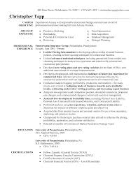 Resume Examples Marketing Internship Resume Samples Intern Intern     Experience Resumes