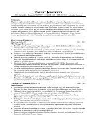 Example Retail Resume  retail resumes  project manager resume