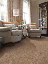 100 home decorators carpet common carpet cleaning u0026