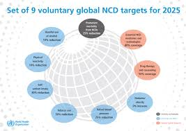 updates from the field newsletter spring 2015 issue 18 and indicators in accordance with the who global monitoring
