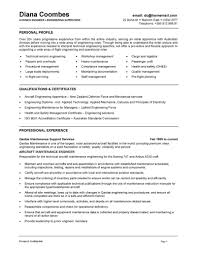 Resume Sample Software Engineer Professional Page