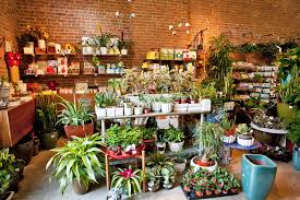 Home Design Store Chicago Best Garden Store Options In Nyc For Plants Flowers U0026 Landscaping