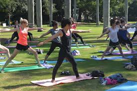 Brisbane City Botanic Gardens by Sunday Stretch Sessions Yoga In Brisbane U0027s Botanic Gardens