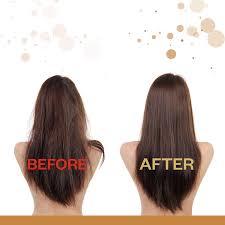 Shampoo For Dry Hair And Hair Loss Amazon Com Majesticel Argan Oil Serum For Hair 3 4 Ounce Beauty
