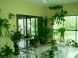 Home Decor Orange County by Indoor Plant Design 2016 5 Indoor Plant Design Trends For Orange