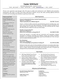 The Best Resume In The World by Sample Resume Formats For Experienced Download Mca Resume Format